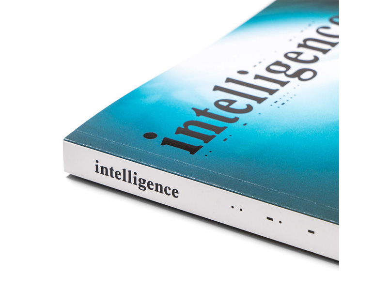intelligence-Magazine-Issue-2-Sk8thing-2-1